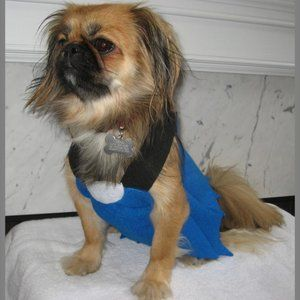 Betty Rubble Pet Costume – Dog Not Included